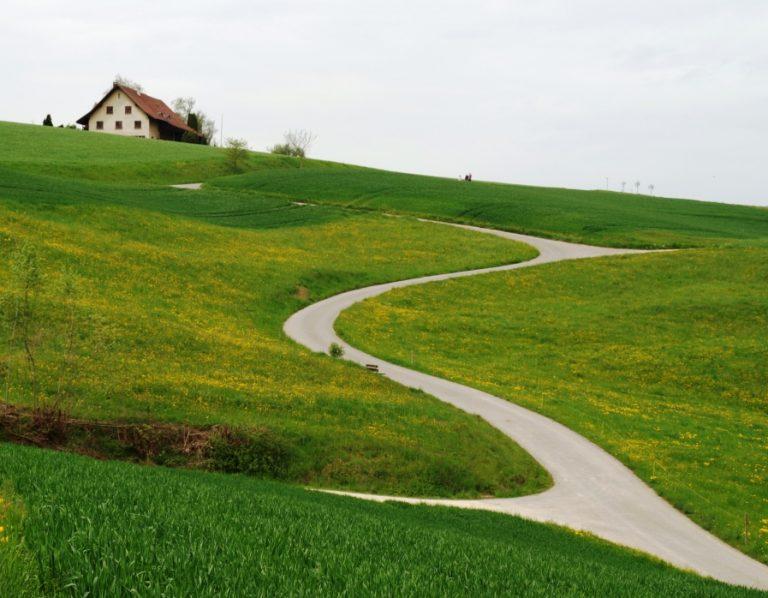Einen guten Weg finden / Bild: Robert Knüsel