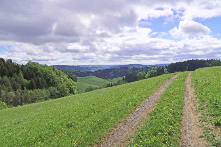 Zwischen Roggliswil und Altishofen. | © 2018 Urban Schwegler