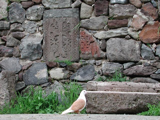 Vogel oder Friedenstaube – wo entsteht Bedeutung? | Bild: pixabay